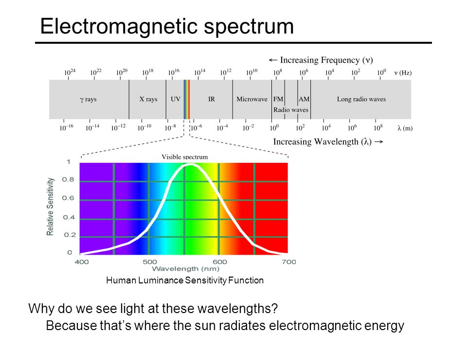 Electromagnetic spectrum Why do we see light at these wavelengths? Because that's where the sun radiates electromagnetic energy Human Luminance Sensit