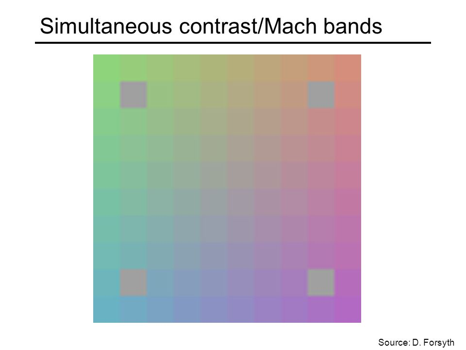 Simultaneous contrast/Mach bands Source: D. Forsyth