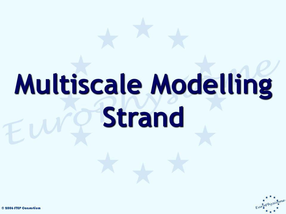 © 2006 STEP Consortium Multiscale Modelling Strand