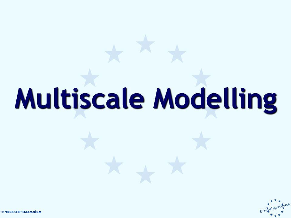 © 2006 STEP Consortium Multiscale Modelling