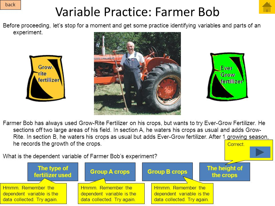 The height of the crops Correct. Variable Practice: Farmer Bob Before proceeding, let's stop for a moment and get some practice identifying variables