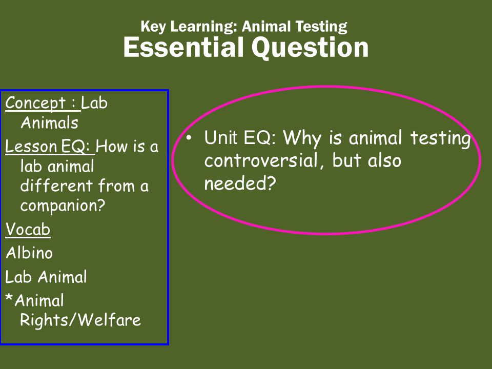 Essential Question Key Learning: Animal Testing Unit EQ: Why is animal testing controversial, but also needed.