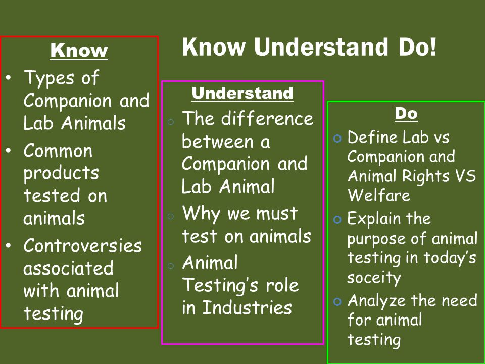Know Understand Do! Know Types of Companion and Lab Animals Common products tested on animals Controversies associated with animal testing Understand