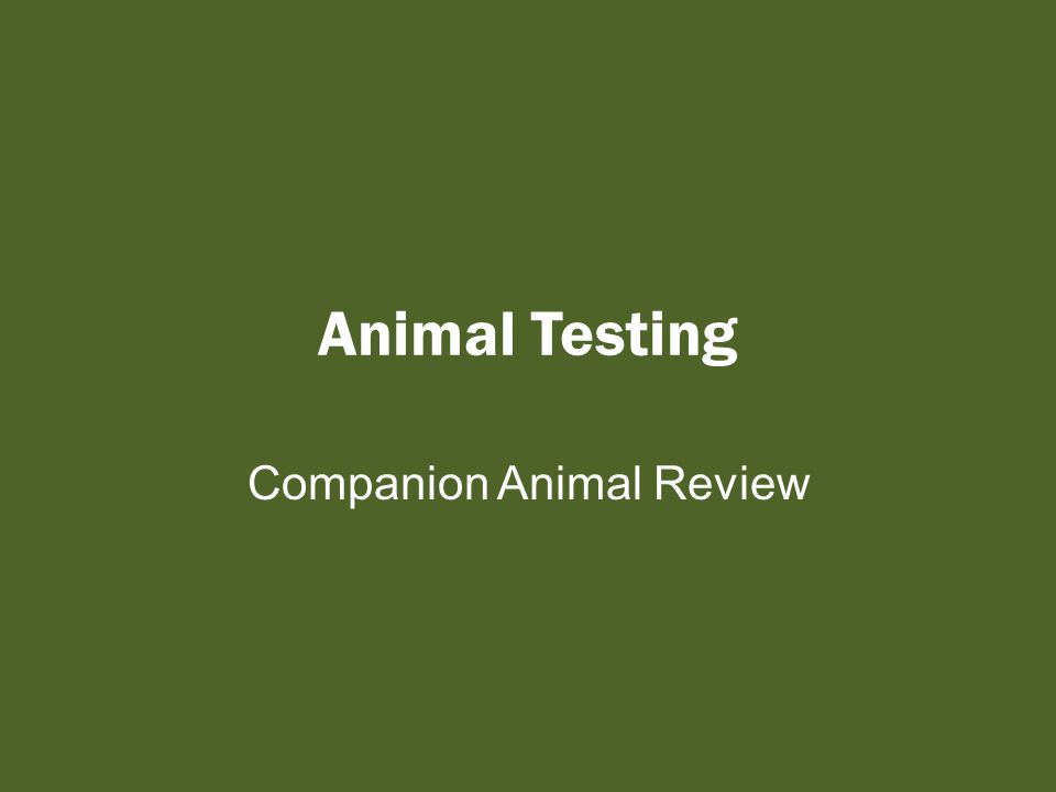 Let's Summarize Summarize in 3 sentences the FUTURE direction of Animal Testing Think Write Pair/Share