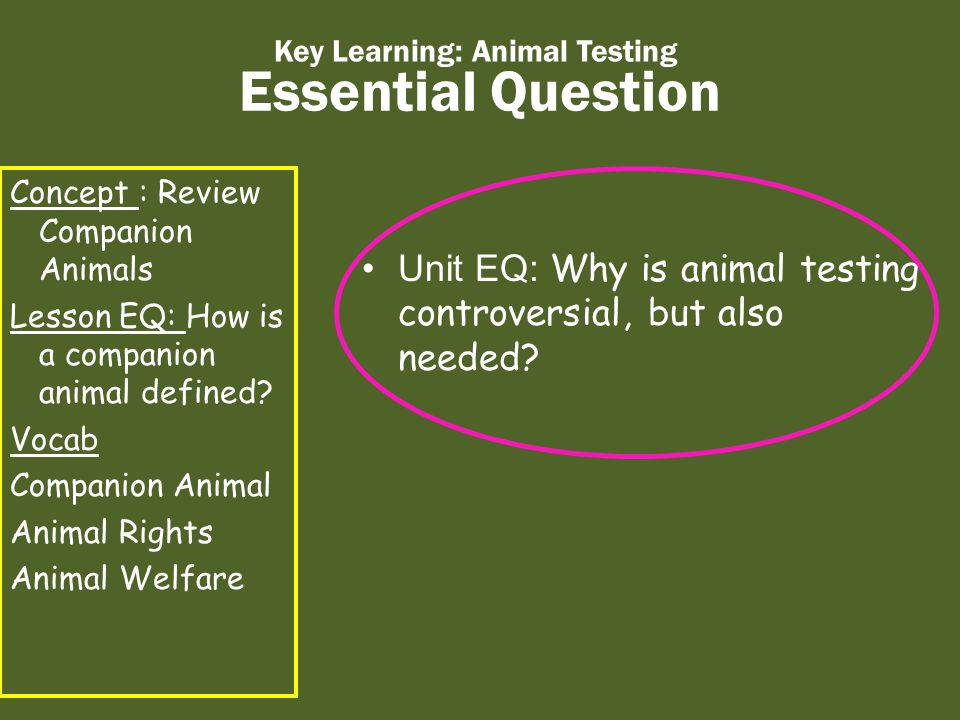 Essential Question Key Learning: Animal Testing Concept : Review Companion Animals Lesson EQ: How is a companion animal defined.