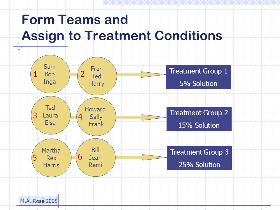 M.A. Rose 2008 Form Teams and Assign to Treatment Conditions Treatment Group 1 5% Solution Treatment Group 2 15% Solution Treatment Group 3 25% Soluti