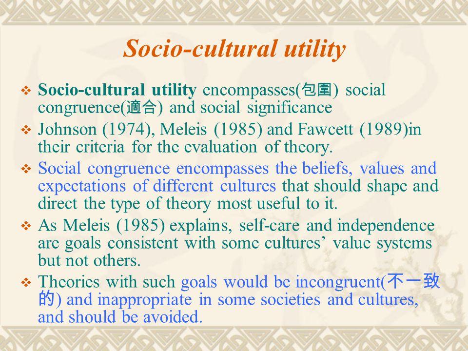 Socio-cultural utility  Socio-cultural utility encompasses( 包圍 ) social congruence( 適合 ) and social significance  Johnson (1974), Meleis (1985) and