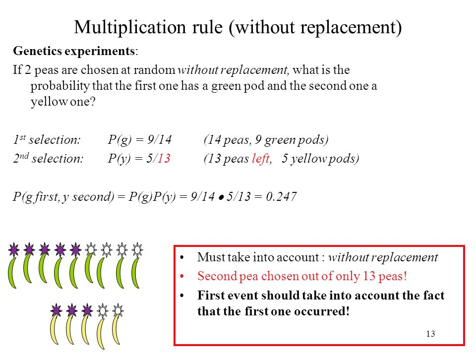 13 Multiplication rule (without replacement) Genetics experiments: If 2 peas are chosen at random without replacement, what is the probability that the first one has a green pod and the second one a yellow one.