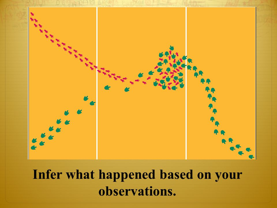 Infer what happened based on your observations.