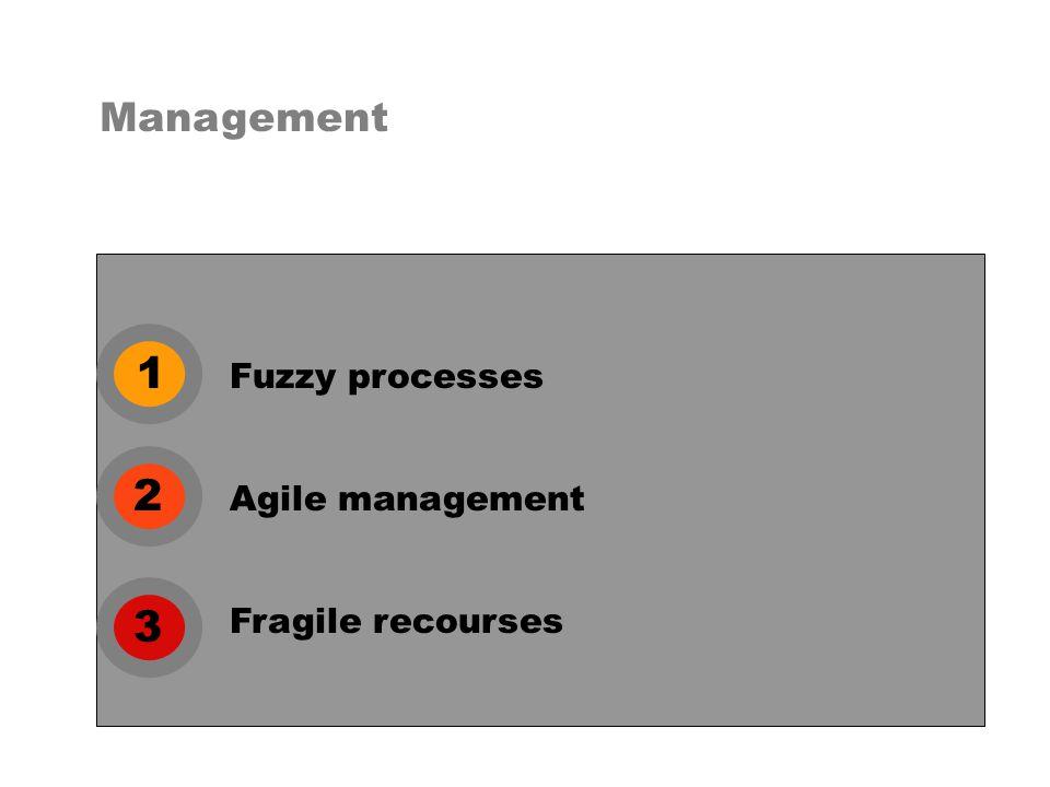 1 2 3 Fuzzy processes Management Agile management Fragile recourses