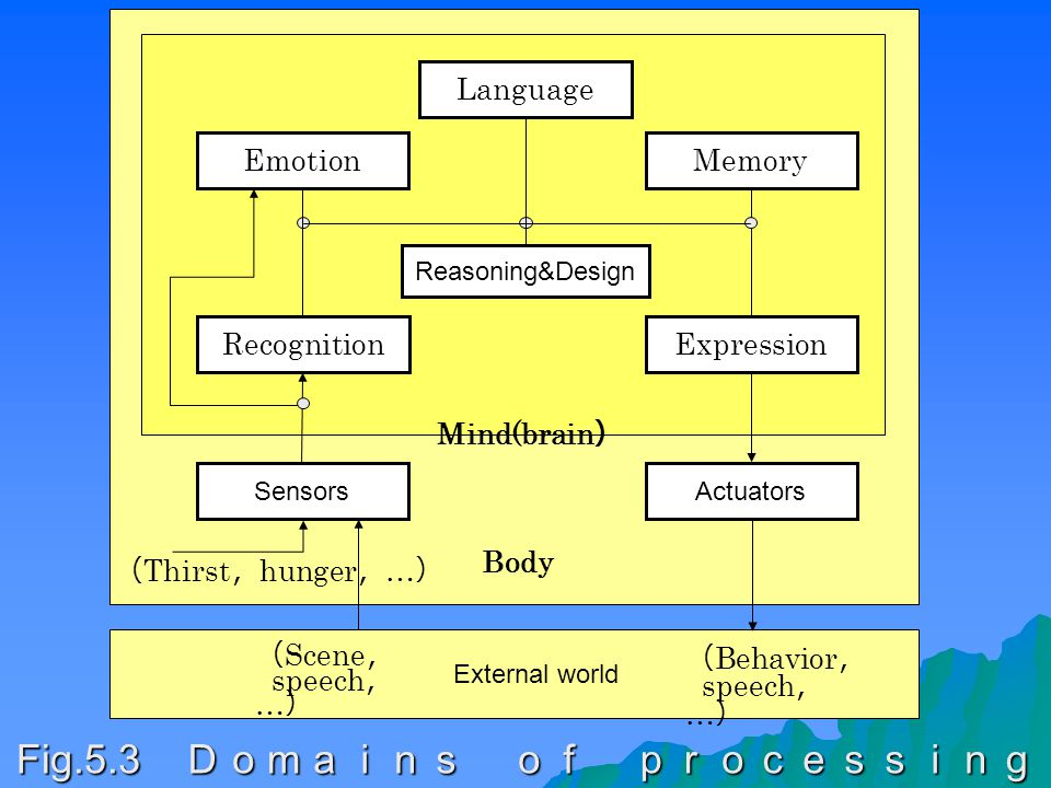 RecognitionExpression Reasoning&Design MemoryEmotion SensorsActuators Language Mind(brain ) ( Thirst , hunger , … ) Body External world ( Scene , speech , … ) ( Behavior , speech , … ) Fig.5.3 Domains of processing
