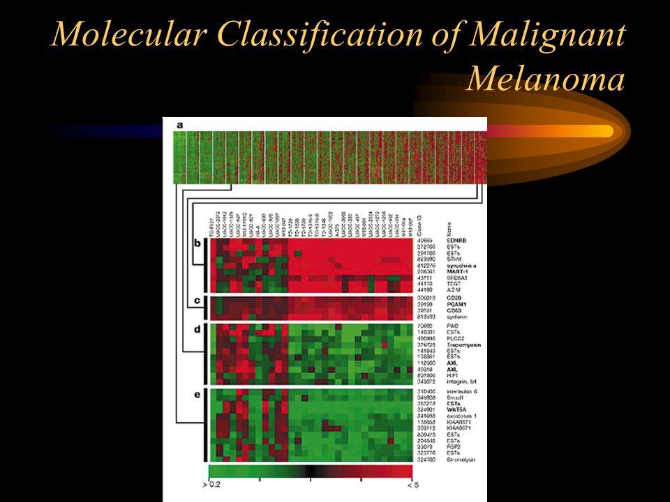 Molecular Classification of Malignant Melanoma