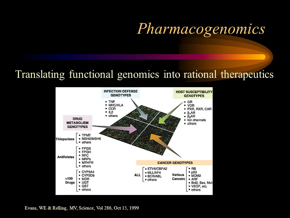 Evans, WE & Relling, MV, Science, Vol 286, Oct 15, 1999 Pharmacogenomics Translating functional genomics into rational therapeutics