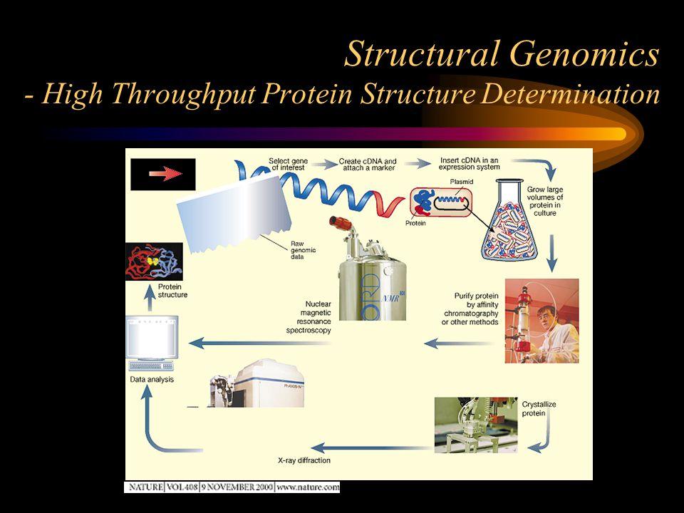 Structural Genomics - High Throughput Protein Structure Determination