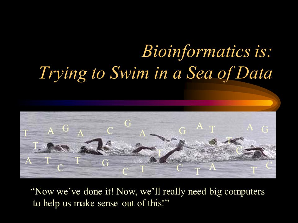 "Bioinformatics is: Trying to Swim in a Sea of Data A A A G T G C T G A T C T T T C T C G A T C T A T A G C ""Now we've done it! Now, we'll really need"
