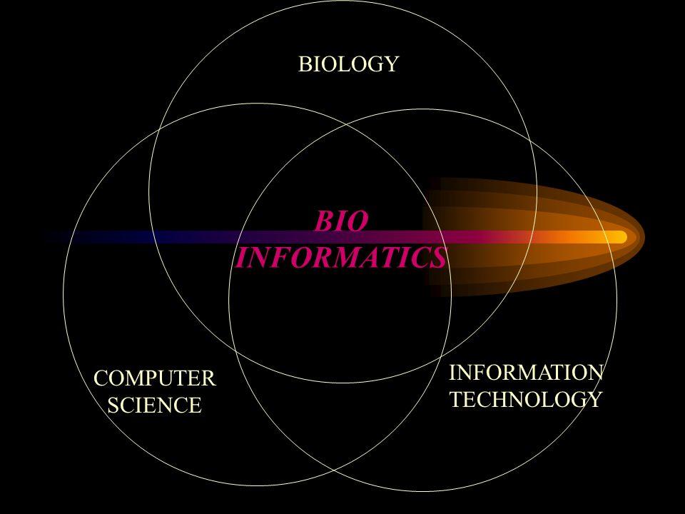 BIO INFORMATICS BIOLOGY COMPUTER SCIENCE INFORMATION TECHNOLOGY