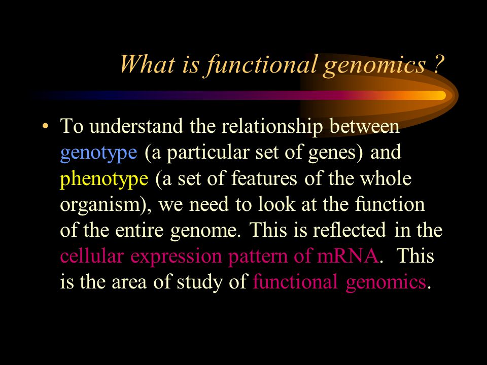 What is functional genomics ? To understand the relationship between genotype (a particular set of genes) and phenotype (a set of features of the whol