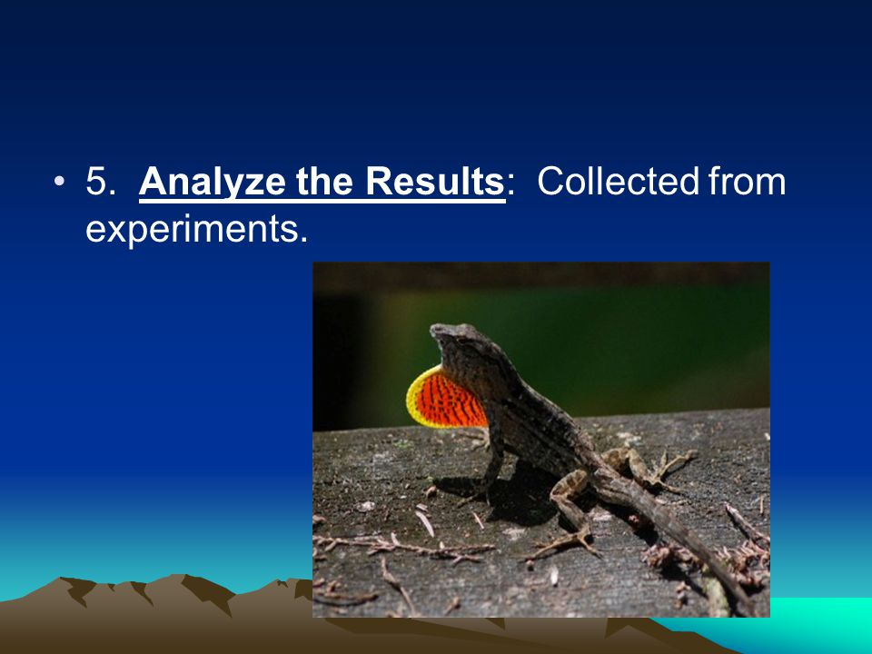 5. Analyze the Results: Collected from experiments.