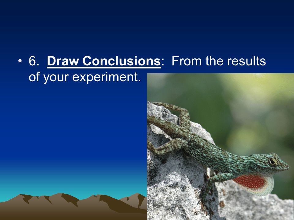 6. Draw Conclusions: From the results of your experiment.