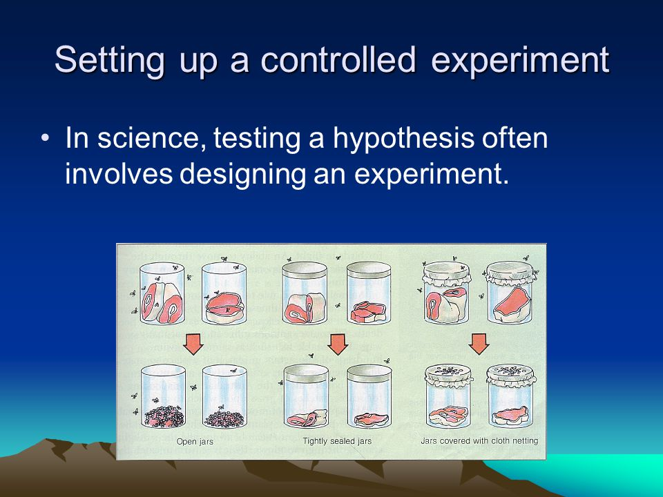 Setting up a controlled experiment In science, testing a hypothesis often involves designing an experiment.