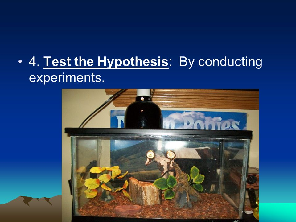 4. Test the Hypothesis: By conducting experiments.