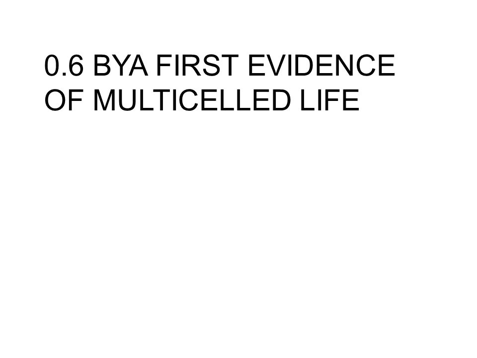 0.6 BYA FIRST EVIDENCE OF MULTICELLED LIFE