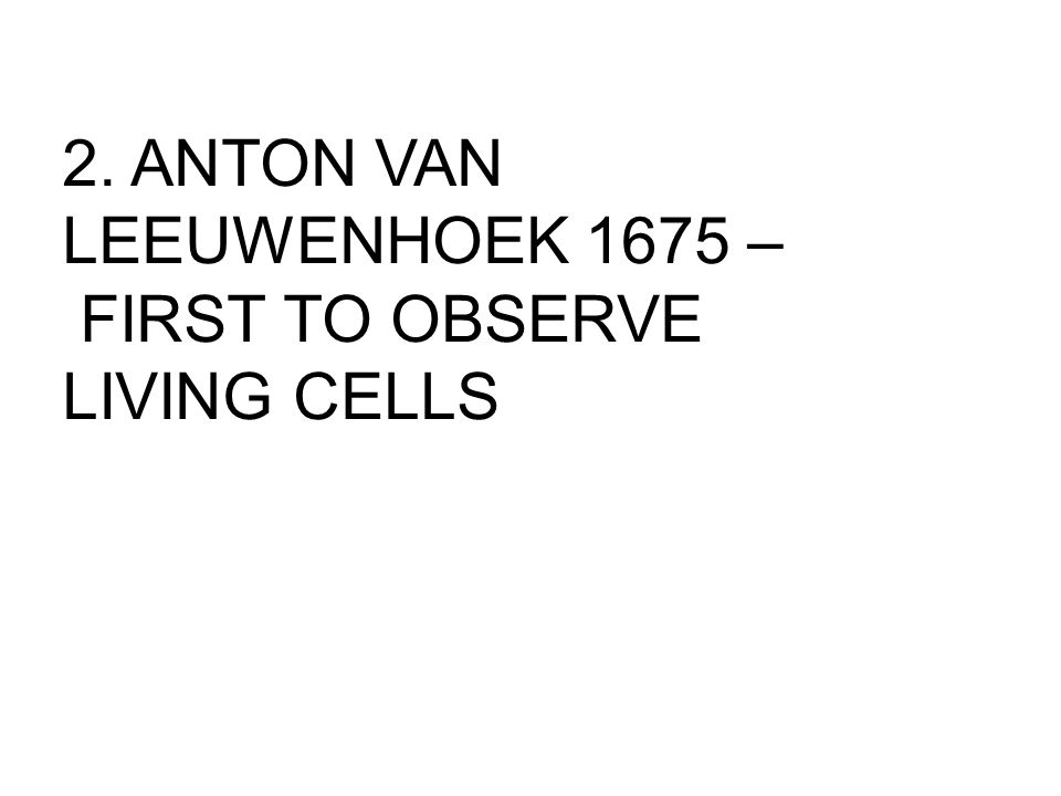 2. ANTON VAN LEEUWENHOEK 1675 – FIRST TO OBSERVE LIVING CELLS