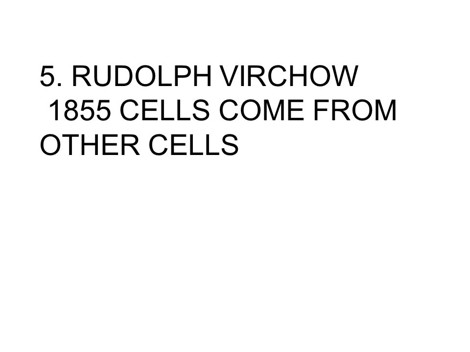 5. RUDOLPH VIRCHOW 1855 CELLS COME FROM OTHER CELLS