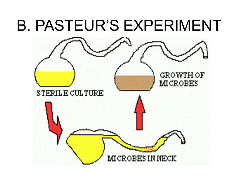 B. PASTEUR'S EXPERIMENT