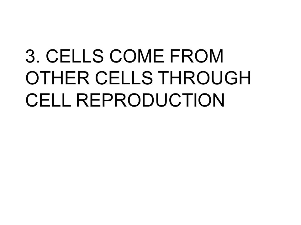 3. CELLS COME FROM OTHER CELLS THROUGH CELL REPRODUCTION