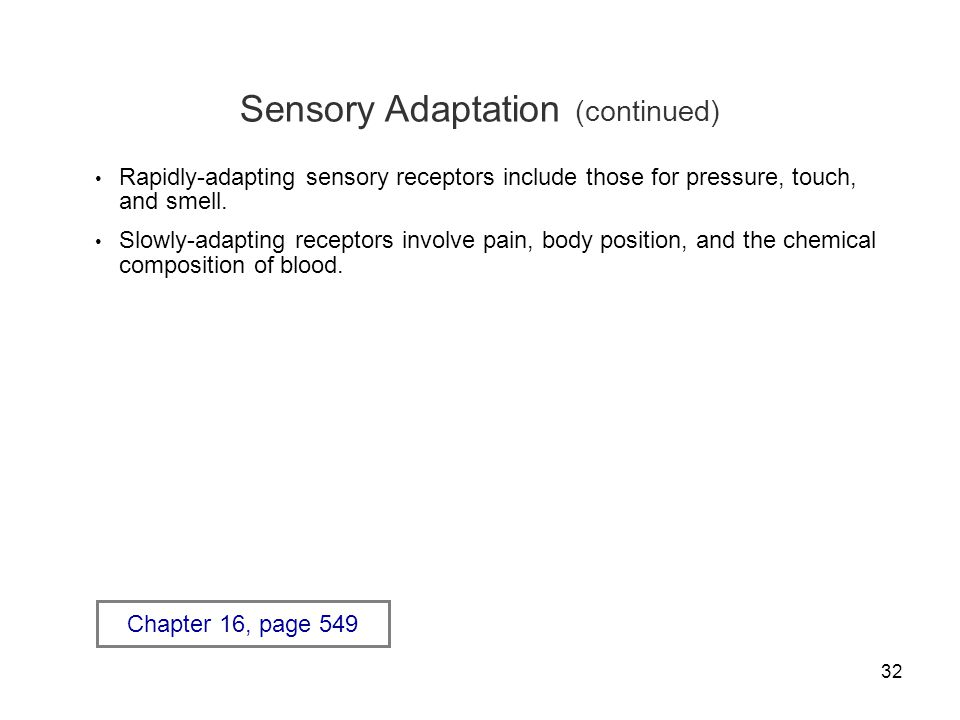 32 Sensory Adaptation (continued) Rapidly-adapting sensory receptors include those for pressure, touch, and smell. Slowly-adapting receptors involve p