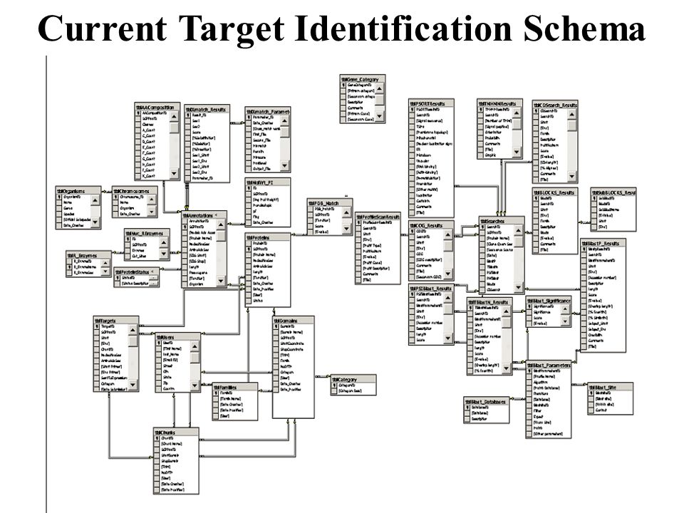 Current Target Identification Schema