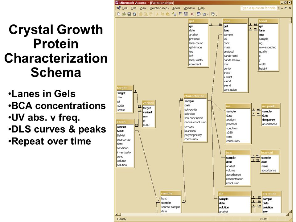 Crystal Growth Protein Characterization Schema Lanes in Gels BCA concentrations UV abs.