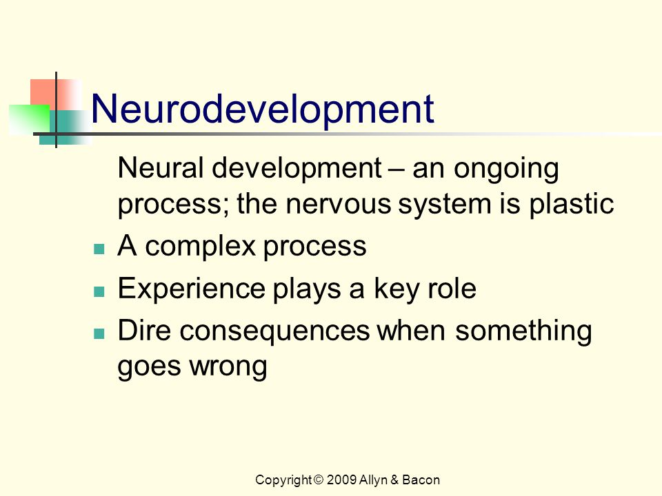 Copyright © 2009 Allyn & Bacon Neurodevelopment Neural development – an ongoing process; the nervous system is plastic A complex process Experience plays a key role Dire consequences when something goes wrong
