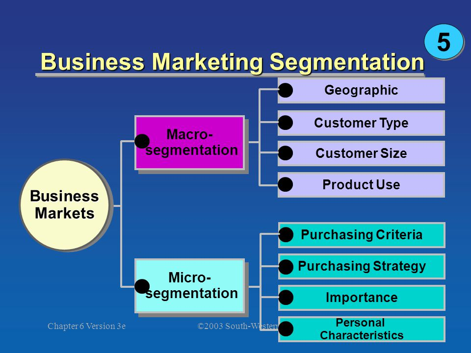 ©2003 South-Western Chapter 6 Version 3e34 Business Marketing Segmentation Geographic Customer Type Customer Size Product Use BusinessMarketsBusinessMarkets Purchasing Criteria Purchasing Strategy Importance Personal Characteristics Micro- segmentation Micro- segmentation Macro- segmentation Macro- segmentation 5 5