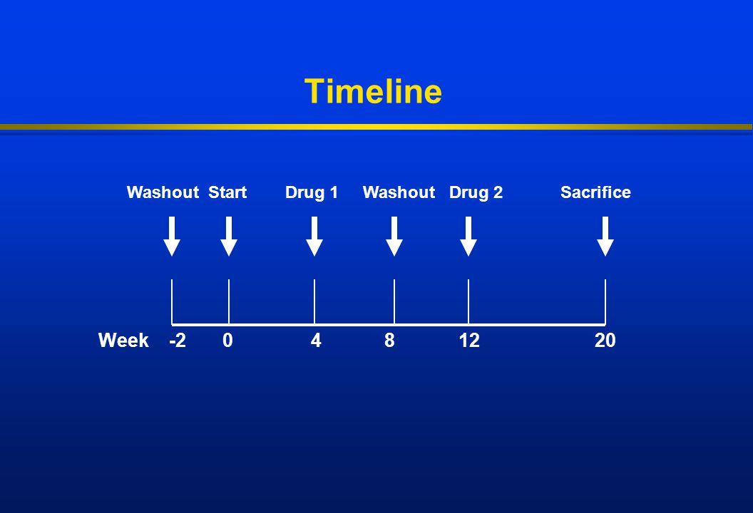 Timeline Week -2 0 4 8 12 20 Washout Start Drug 1 Washout Drug 2 Sacrifice