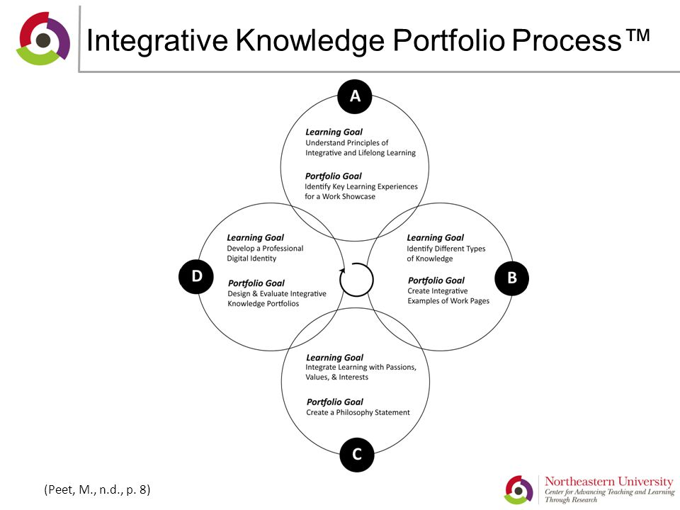 Integrative Knowledge Portfolio Process™ (Peet, M., n.d., p. 8)