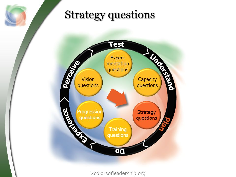 3colorsofleadership.org Strategy questions Vision questions Progression questions Training questions Experi- mentation questions Capacity questions Strategy questions