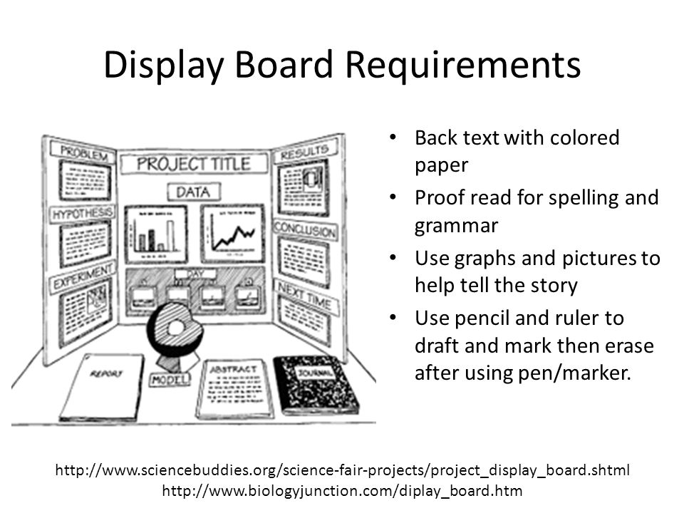 Display Board Requirements Back text with colored paper Proof read for spelling and grammar Use graphs and pictures to help tell the story Use pencil and ruler to draft and mark then erase after using pen/marker.
