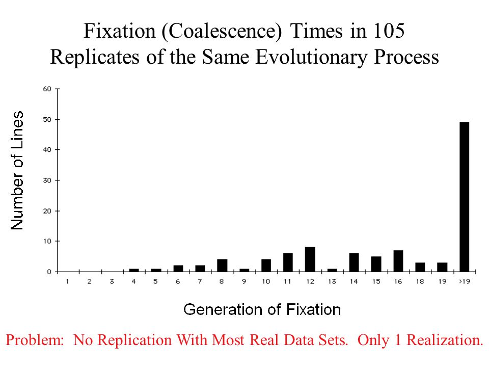 Fixation (Coalescence) Times in 105 Replicates of the Same Evolutionary Process Problem: No Replication With Most Real Data Sets.