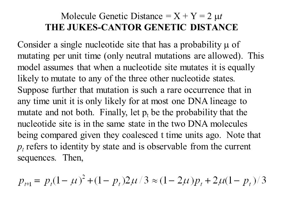 Molecule Genetic Distance = X + Y = 2  t THE JUKES-CANTOR GENETIC DISTANCE Consider a single nucleotide site that has a probability  of mutating per unit time (only neutral mutations are allowed).
