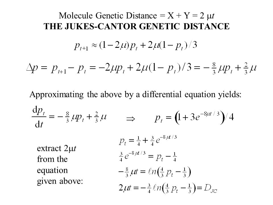 Molecule Genetic Distance = X + Y = 2  t THE JUKES-CANTOR GENETIC DISTANCE Approximating the above by a differential equation yields:  extract 2  t