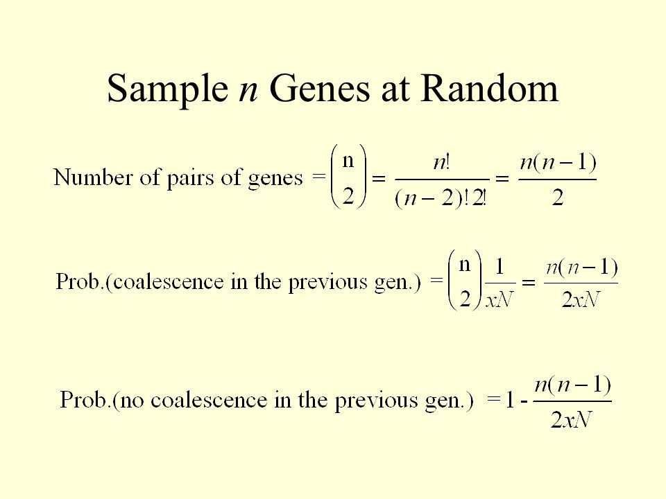 Sample n Genes at Random