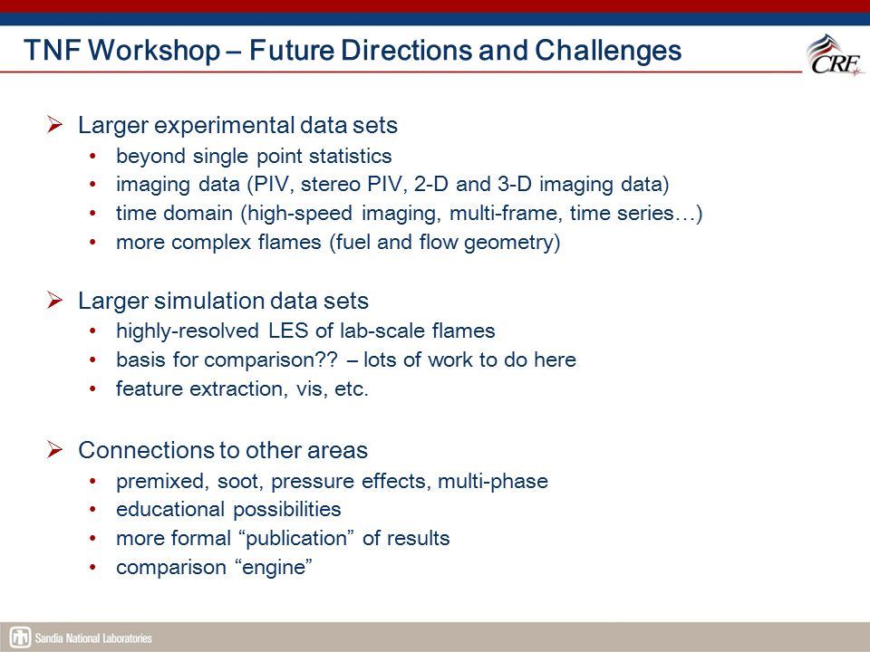 TNF Workshop – Future Directions and Challenges  Larger experimental data sets beyond single point statistics imaging data (PIV, stereo PIV, 2-D and