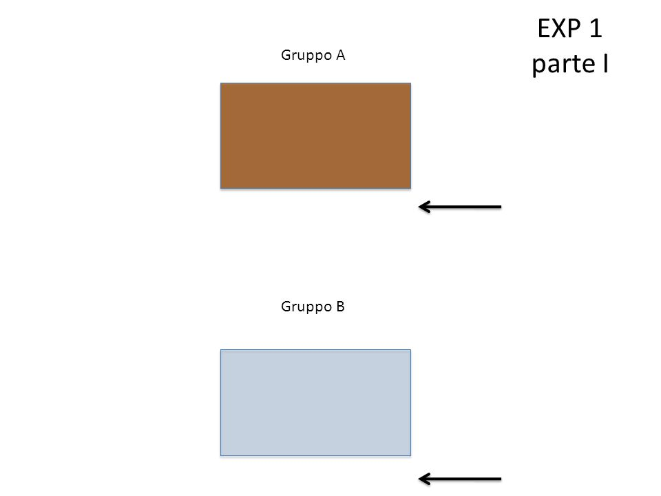 Gruppo A Gruppo B EXP 1 parte I