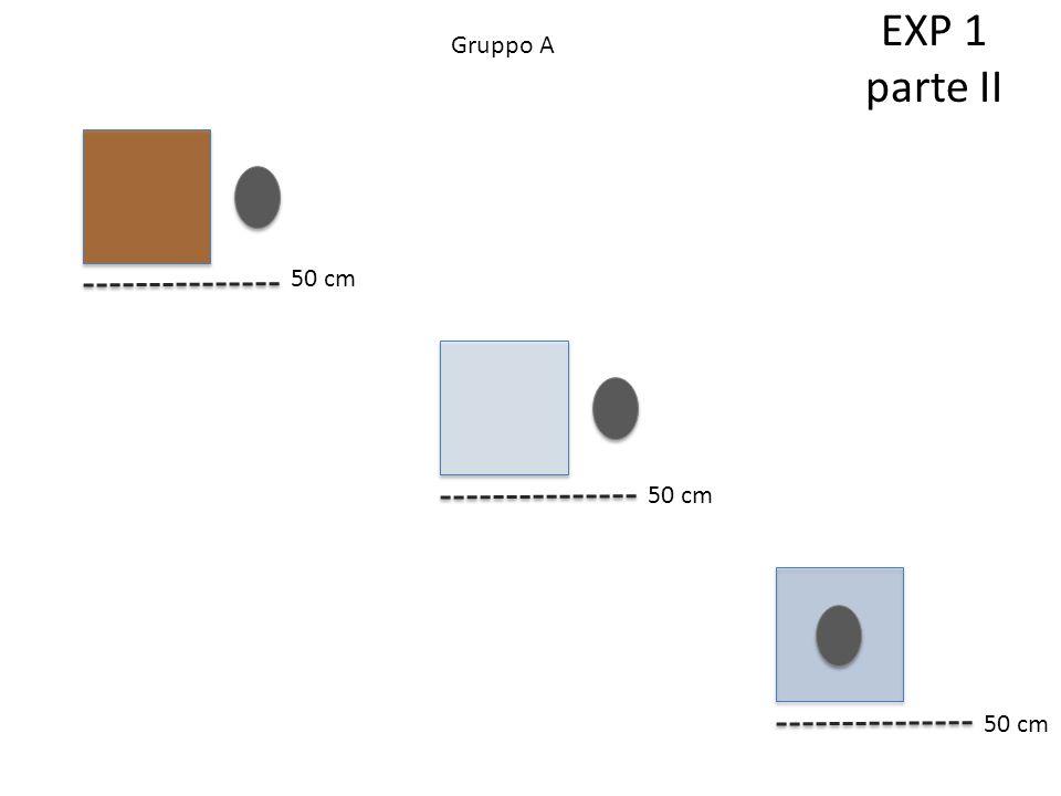 Gruppo A 50 cm EXP 1 parte II