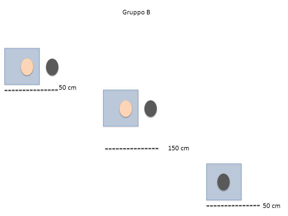 Gruppo B 50 cm 150 cm 50 cm