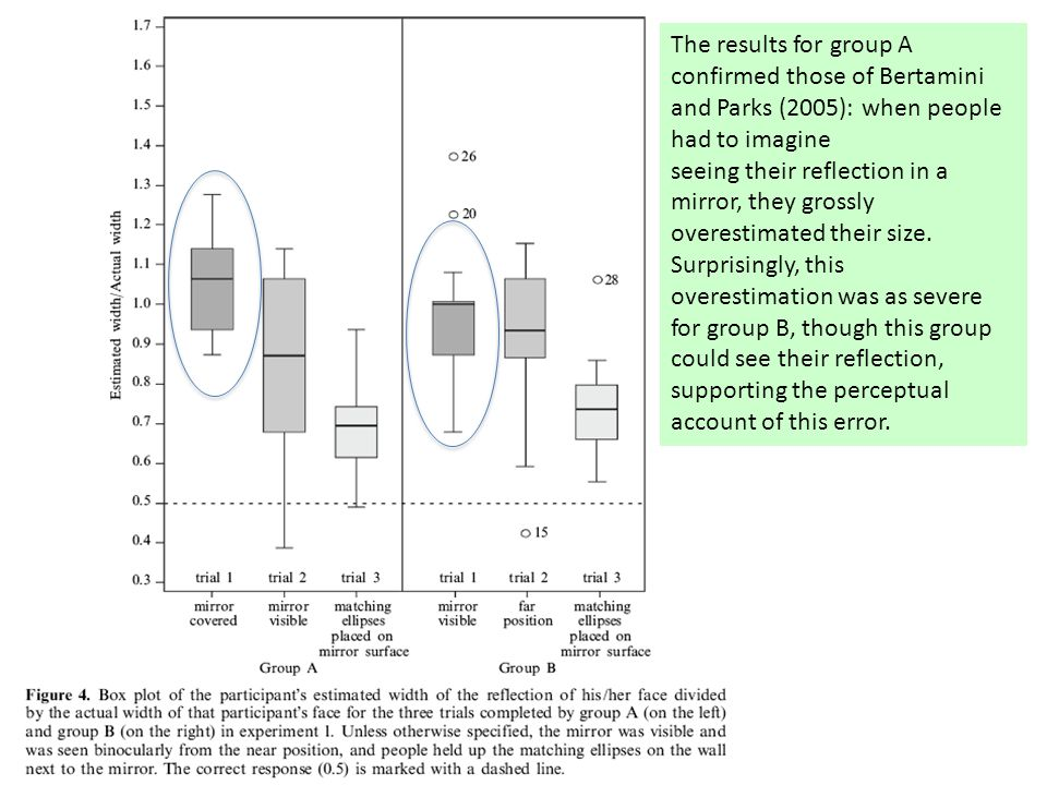 The results for group A confirmed those of Bertamini and Parks (2005): when people had to imagine seeing their reflection in a mirror, they grossly overestimated their size.