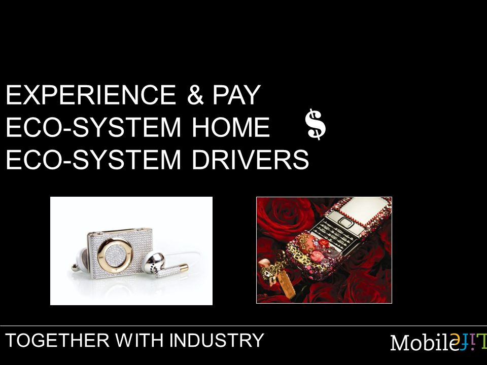 EXPERIENCE & PAY ECO-SYSTEM HOME ECO-SYSTEM DRIVERS TOGETHER WITH INDUSTRY $