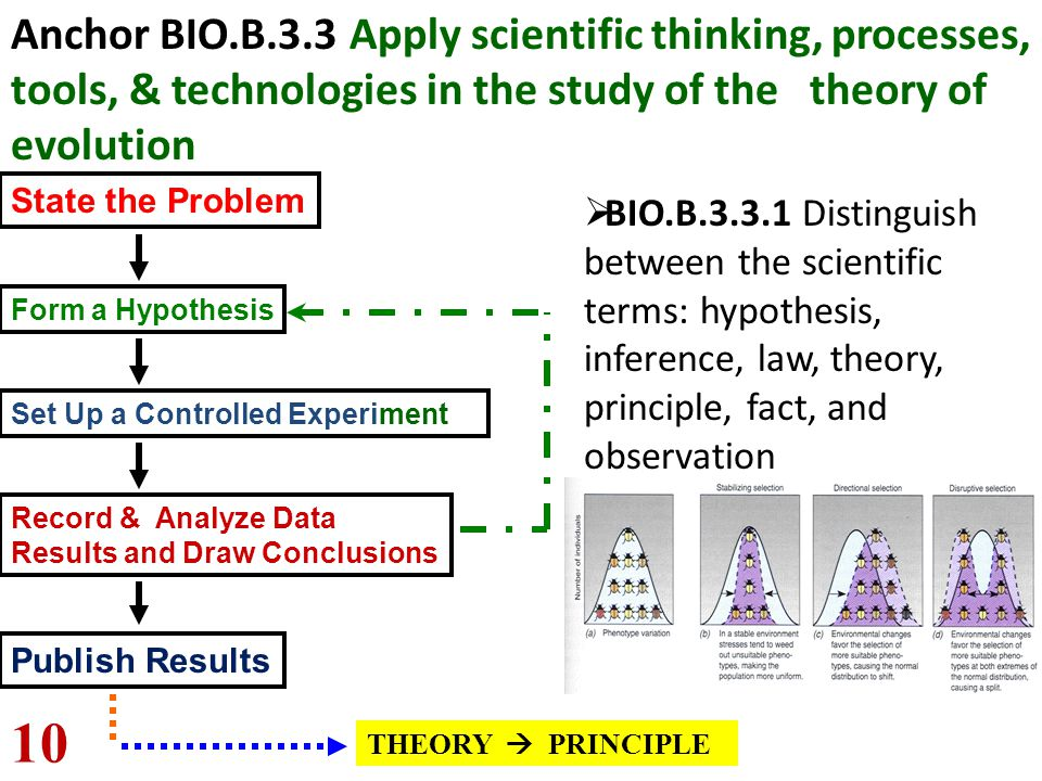 State the Problem Form a Hypothesis Set Up a Controlled Experiment Record & Analyze Data Results and Draw Conclusions Publish Results THEORY  PRINCIP